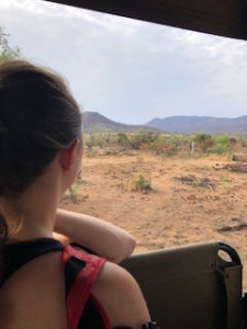 young woman watches elephants from a safari vehicle