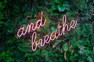 """wall of plants with """"and breathe"""" in pink neon lights it's okay not to write sometimes"""