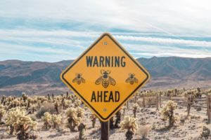 """sign in desert saying """"Warning Ahead"""" What if your fear is where your art is?"""
